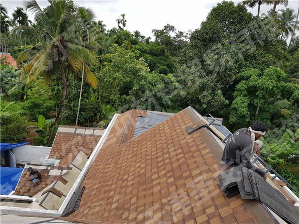 使用圣戈邦玻纤沥青瓦,屋面长草不可能!